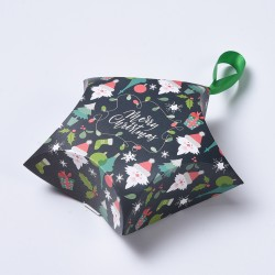 Χριστουγεννιάτικο Κουτί Δώρων με Κορδέλα, Αστέρι, Χάρτινο, Σκούρο Πράσινο